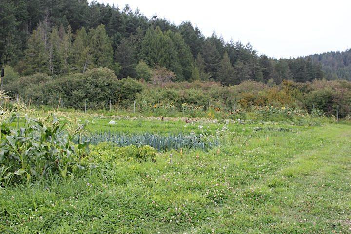 Land Social at Lohbrunner Community Farm Co-op image