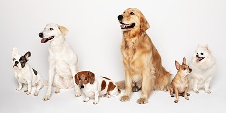 Oakridge Park Charity Dog Competition tickets