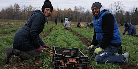 Shelldale Community Harvest Day at Everdale Farm tickets