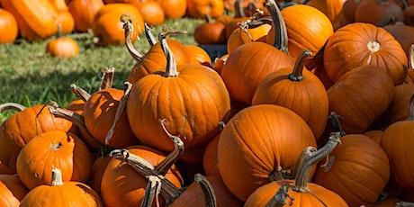Regular Weekend Pumpkin Patch Season Ticket tickets