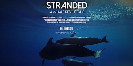 Stranded: A Whale Rescue Tale Virtual Premiere biglietti