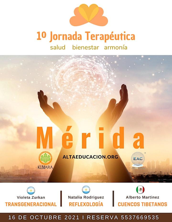 Imagen de 1º Jornada Terapéutica en Mérida