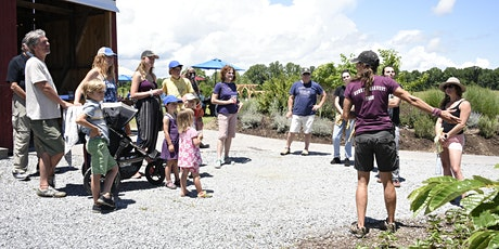 Wild Edibles Farm Tour and Nature Walk tickets