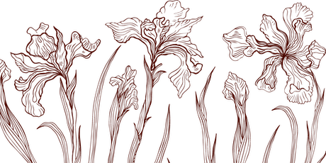 Floralism Festival_visita al Festival biglietti