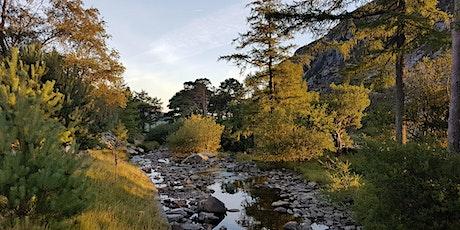 Autumn Snowdonia tickets