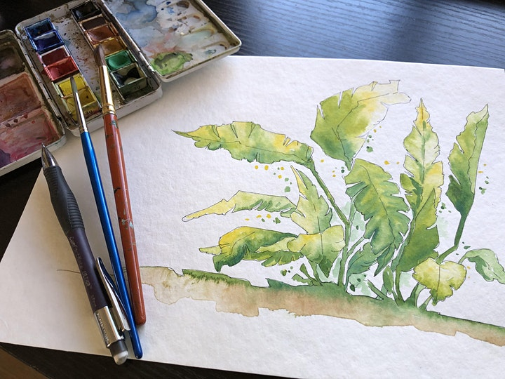 Painting in Watercolour Online - Botanical overview image