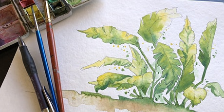Painting in Watercolour Online - Botanical overview tickets