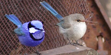 BirdLife Western Australia - General Meeting tickets