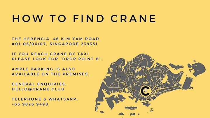 Crane Christmas Pop Ups image