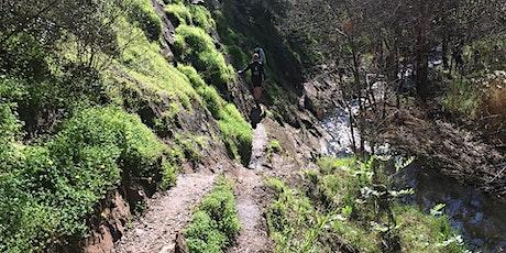 Weekend Walks for Women - Sturt Gorge Adventure Hike 17th October tickets