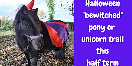 Halloween Pony or Unicorn Trail, Cheshire tickets