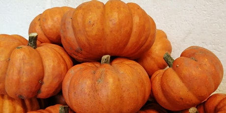 Pumpkin Carving and Competition at the Animal Zone tickets