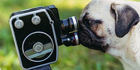 Film-making for Social Media tickets