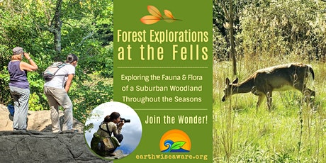 Fall Forest Explorations tickets