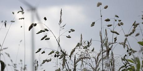 Rights of Nature: Compendium and Zoöp biglietti