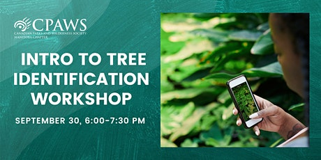 Intro to Tree Identification Workshop tickets