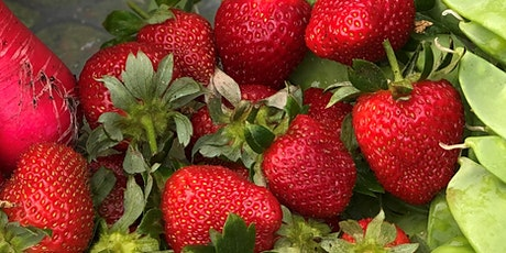 Grow Your Own Strawberries tickets