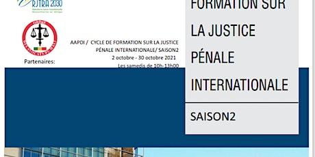 AAPDI / CYCLE DE FORMATION SUR LA JUSTICE PÉNALE INTERNATIONALE/ SAISON2 billets
