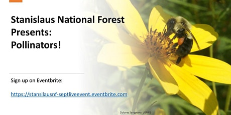 Stanislaus National Forest: Pollinators! tickets