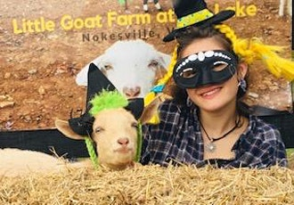 Halloween Baby Goat & Bunny Snuggles & Bottle Feed tickets