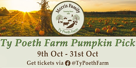 Ty Poeth Farm Pumpkin Pick tickets