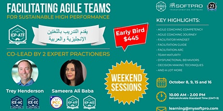 Facilitating Agile Teams for Sustainable High Performance tickets