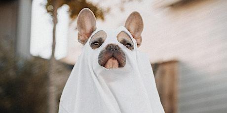 Halloween Dog Parade at Barks & Brews tickets