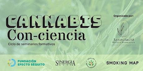 Ciclo formativo Cannabis Con-Ciencia entradas
