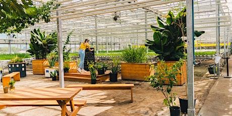 Décoration de citrouilles dans la serre|Pumpkin Carving in the Greenhouse tickets