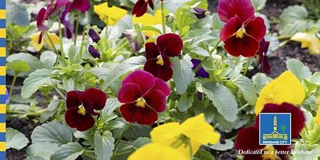 Horticulture Series - Edible Flowers For Your Garden tickets