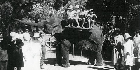 REFLECT - A most modern menagerie: A History of the South Perth Zoo tickets