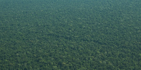 Fire, food and forests - the Amazon rainforest in the 21st century tickets