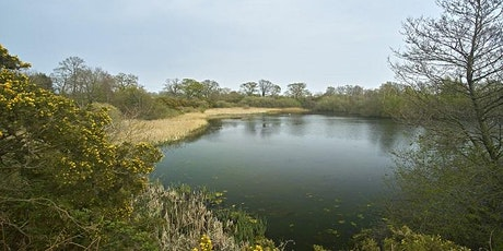 Autumn Highlights at Sparham Pools Guided Walk tickets