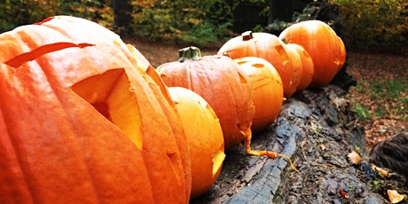 Spooky Storytelling and Pumpkin Carving Adventure tickets