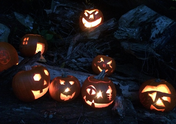 Spooky Storytelling and Pumpkin Carving Adventure image
