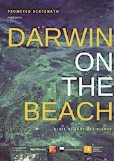 Darwin on the beach biglietti