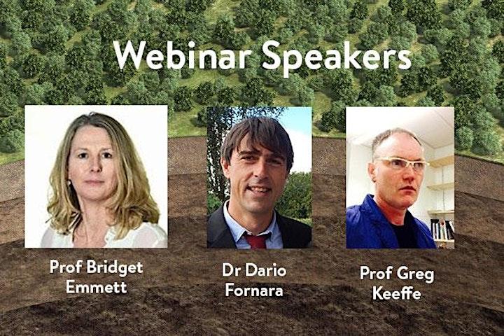 Webinar: Perspectives on the EU Soil Mission image