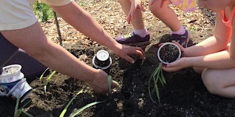 Maine School Garden Days - Session 5 Tickets