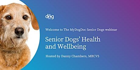 Senior Dog Health and Wellbeing tickets