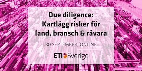 Due diligence: Kartlägg risker för land, bransch & råvara biljetter