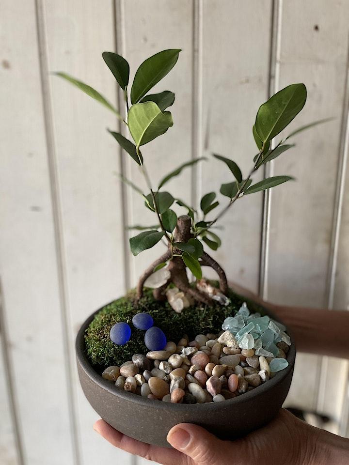 Miniature Zen Garden Happy Hour image