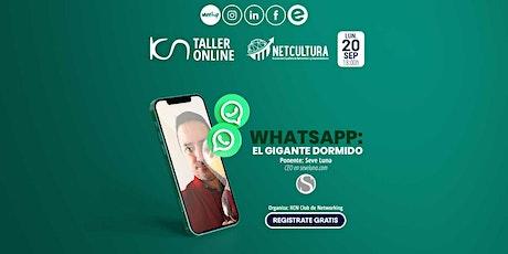 Taller Online: WhatsApp El gigante dormido entradas