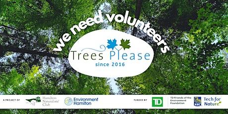 Trees Please Volunteer Event at Normanhurst tickets
