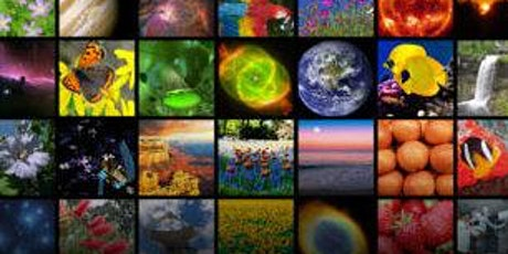 Cosmic Colors & Castaways tickets