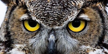 Owl-oween Owl Prowl tickets