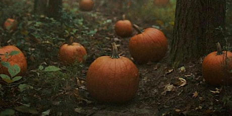 Adults Pumpkin Carving and Spooky Stories tickets