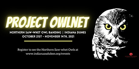 Indiana Dunes Saw-whet Owl Banding Demonstrations tickets