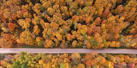 Wonder Walk: Fall colors at Bennett Arboretum presented by Edward Jones tickets