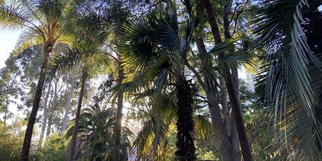 California's Urban Forests in a Changing Environment tickets