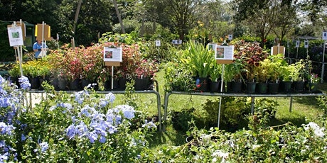 Fall  2021 Master Gardener Plant Sale -OPEN TO THE PUBLIC, NO REGISTRATION tickets